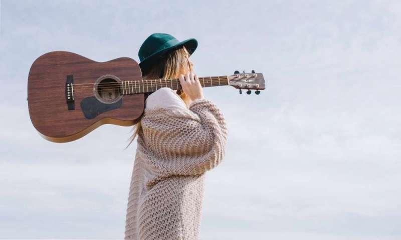 ギターど素人が書くギター基礎知識-主要タイプとメーカー、利用アーティスト